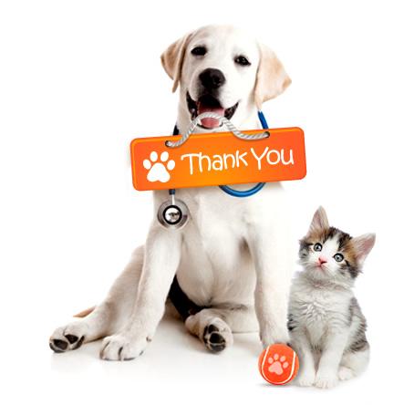 thankyou-dogcat.jpg